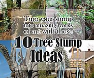 10 Tree Stump Ideas to Turn Stumps Into an Amazing Work of Art
