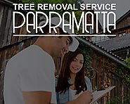 Everything You Need to Know About Tree Removal Service Parramatta