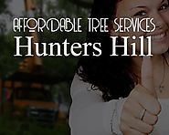 How Do You know we are the Best in Affordable Tree Services Hunters Hill?