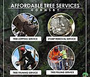 More Affordable Tree Cutting Service Hornsby