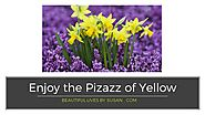 Yellow for Sparkle and Pizazz • Color Power