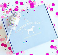 The Dapper Dog Box | Coupon Codes | Promo Codes | Discount Codes | Coupons Mind
