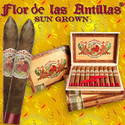 Why Cigar Lovers Choose Flor de las Antillas cigar?