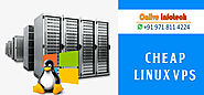 Cheap Linux VPS Hosting is more popular for Business