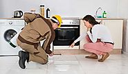 Should Know About Pest Control Cleaning: