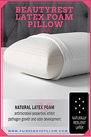 Crafted using natural latex foam from the tropical rubber tree. Inhibits odor and pathogen development. Gently cradle...