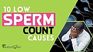 10 Shocking Causes of Oligospermia, Increase Low Sperm Count Naturally