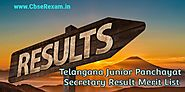 Telangana Junior Panchayat Secretary Result 2018 TSPRI Merit List Result, Cut Off Marks - CbseRexam