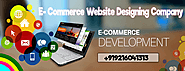 E-commerce Website Development Company in Chandigarh | Solutions 1313