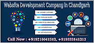 Website Development Company in Chandigarh | Solutions 1313