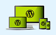 Professional WordPress Design and Development Services in Kerala, India
