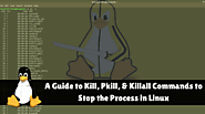 A Guide to Kill, Pkill and Killall Commands to Stop the Process in Linux(Kill Process Linux)
