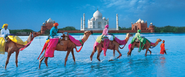 Fixed departure tours in India