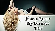 Do you Want to Rectify Your Dry Damaged Hair?