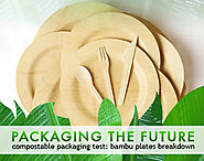 Compostable Packaging Test: Bambu Plates Breakdown | Inhabitat - Green Design, Innovation, Architecture, Green Building