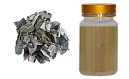 Horny Goat Weed Extract: Beneficial for Natural Health - Standard Herb Extract - Quality Herb-bilberry extract | bota...