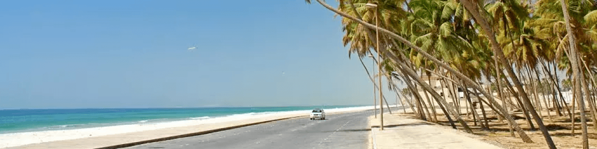 Headline for 7 Things to Do in Salalah - A Guide to the must-dos of the City