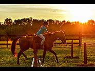 Charlottesville Horse Farms | Market Report for September 2018
