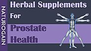 Herbal Supplements for Prostate Health, Best BPH Cure Treatment