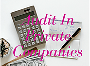 Audit of Private Limited Companies | Company Registration Online
