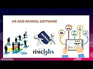 Is HR Payroll Software The Next Big Thing For Organisations