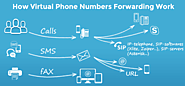 Virtual Number Provider