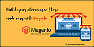 Types Of Magento Solutions Partners Available For Making Your eCommerce Website!