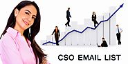 CSO Email List: Chief Security Officers List | CSO Mailing List