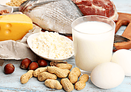 Protein an Essential Requirement for Body Development | Danone India