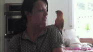 dance with parrot