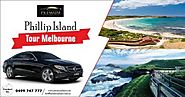 Phillip Island Tour Melbourne | Best Private Cars For Phillip Island Tour