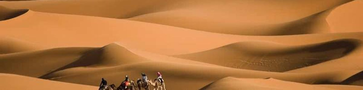 Headline for Unmissable places to visit in the UAE – The many delights in the desert nation