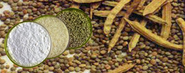 Guar Gum Suppliers Suggest Limited Use And Consumption Of Guar Products