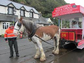 The Douglas Bay Horse Tramway