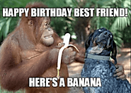 Happy Birthday Best Friend Meme - Funny Happy Birthday Meme