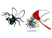 HOW TO GET RID OF HOUSE FLIES: 7 MOST EFFECTIVE METHODS - Pest Control