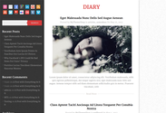 Diary_ Best Free WordPress Themes