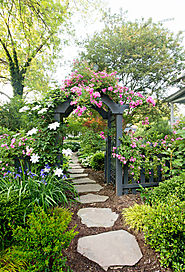 10 Important Steps You Need to Follow for a Thriving Garden
