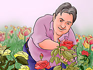 How to Garden (with Pictures) - wikiHow
