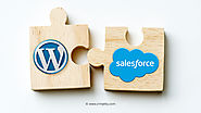 Things You Need to Consider while Integrating WordPress and Salesforce