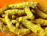 Turmeric powder manufacturers in Erode, Turmeric powder suppliers in India, Pure turmeric oleoresin manufacturers in ...