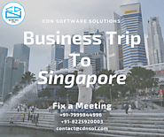 CDN Software Solutions Will Be On A Business Trip To Singapore From 10th June – 28th June, 2019 | Blog