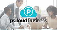 pCloud Business - Secure Cloud Storage Solution for Any Company