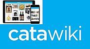 Catawiki welcomes many millions visitors from all over the | elink