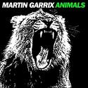 Martin Garrix-Animals