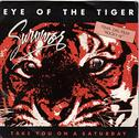 Survivor-Eye of the Tiger