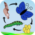 A Life Cycle App - iOS app from Nth Fusion LLC | Appolicious ™ iPhone and iPad App Directory