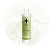Best Organic Hair Care Products for Daily Use