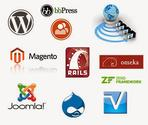 When do you need the services of a web development company?