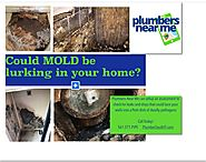 Could Mold Lurking in your Home?